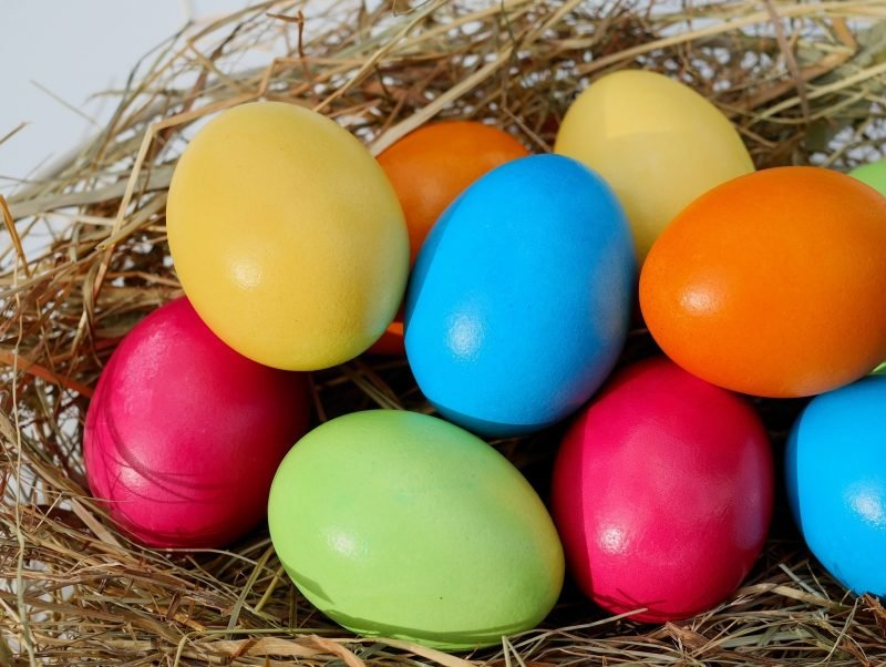 2019 Easter Eggstravaganza Picture
