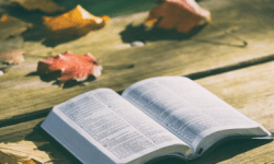 Bible with fall leaves