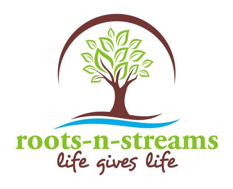 Logo for Roots N Streams showing a tree and a river. Click to go to their website