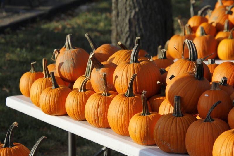 Pumpkin Drive-Thru